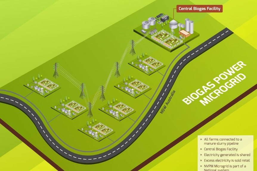 Plan showing biogas plant connecting to electricity poles and wires planned for dairy farm effluent in Nowra