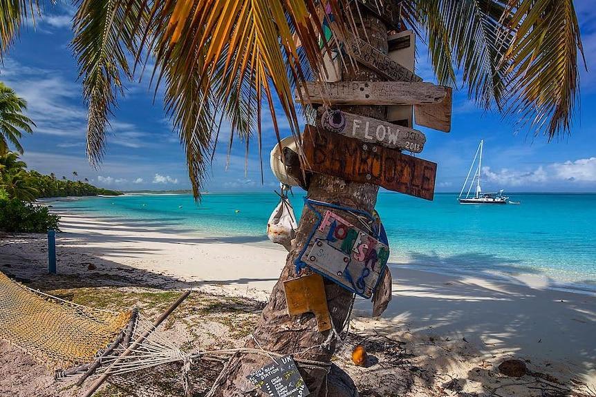 A palm tree and hammock on a pristine white sand beach.