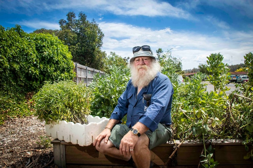 A man with a white beard sits next to a vegetable patch