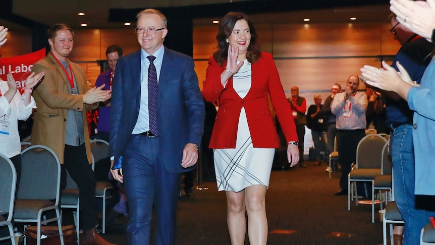 Queensland Labor president John Battams acknowledges shortcomings in federal election track record – ABC News