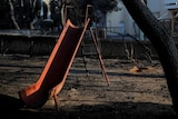 An orange slide and a tree blackened by fire in a burned-out playground with fire-damaged buildings in the background