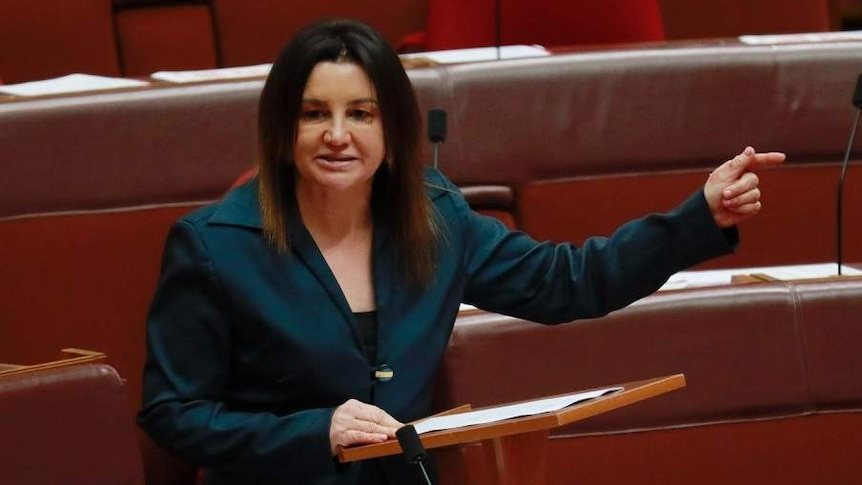 Jacqui Lambie points a finger while speaking.