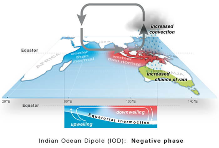 A graphic image showing what happens in the negative phase of the Indian Ocean Dipole.