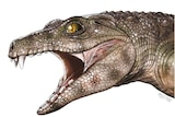 An artists impression of a roaring large reptile head in profile.