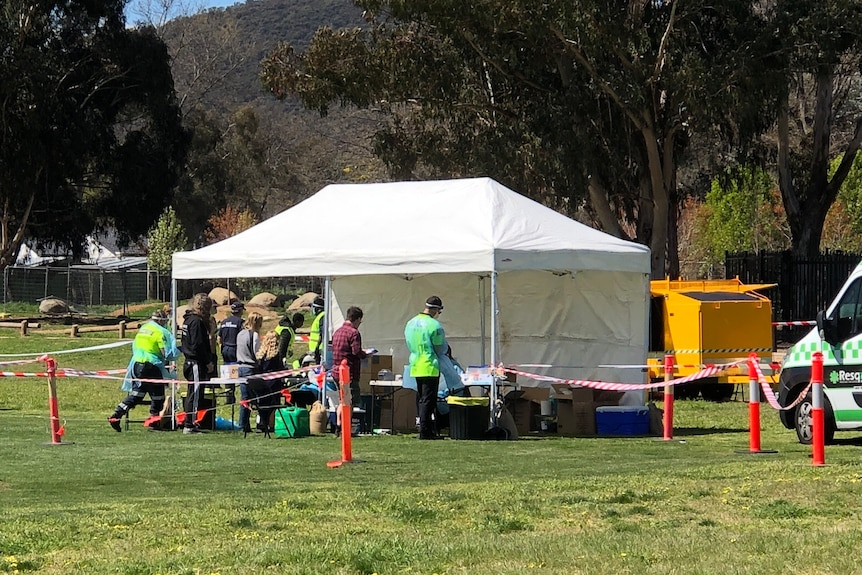 A marquee white tent stands on a grassy oval, people in high-vis and others gathered there.