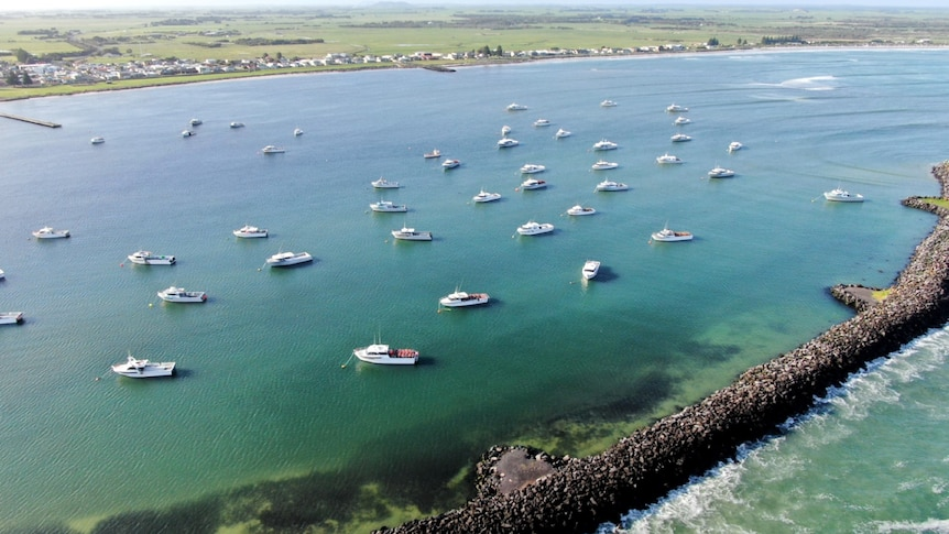 Drone shot of boats in the water with a breakwater and the shoreline in the distance.