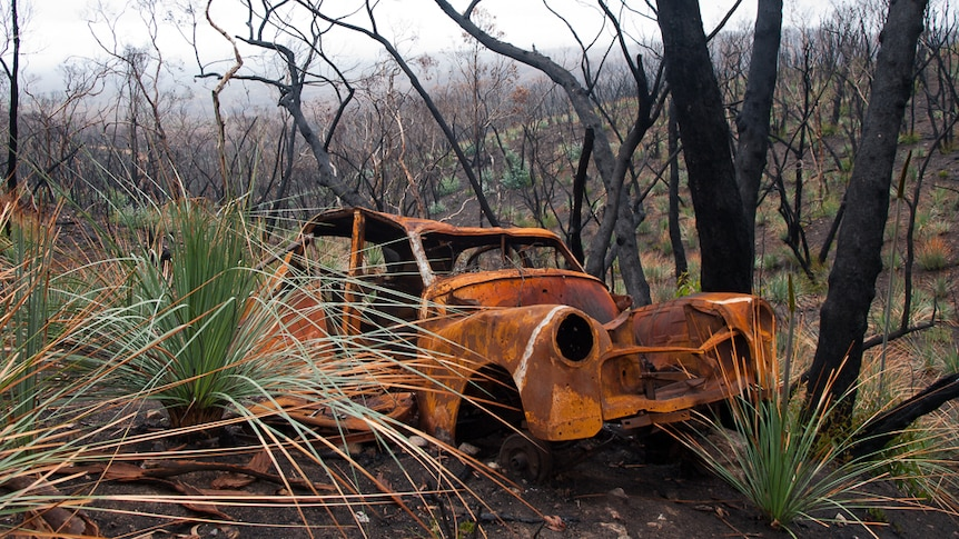 A car wreck adds colour to the Kersbrook Road gully.