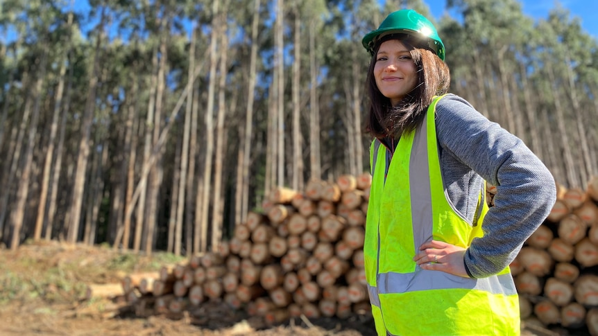 With a shortage of building timber, why send eucalyptus nitens overseas as woodchips?
