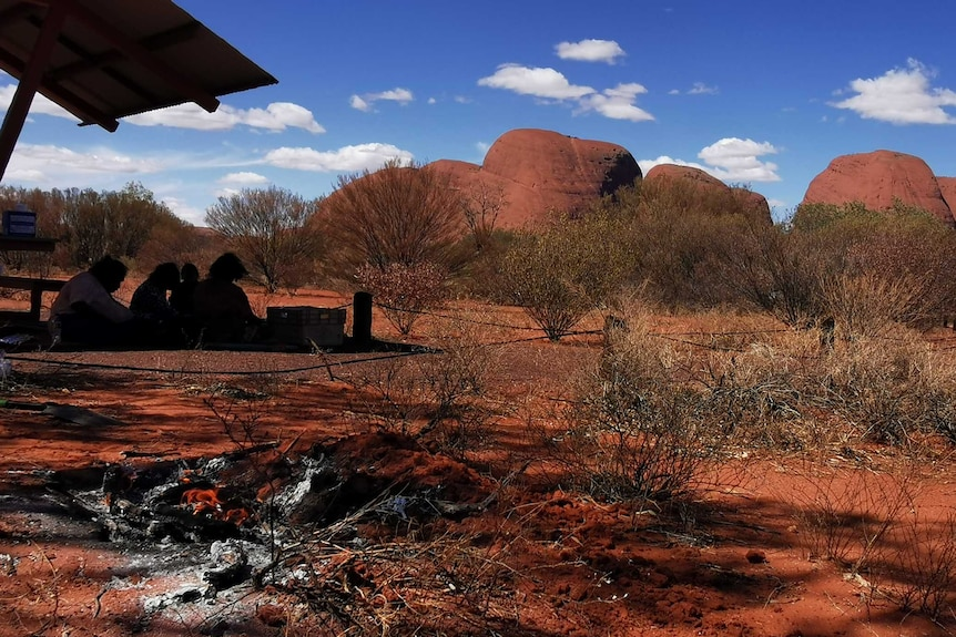 Kangaroo tails cooking at a popular tourist look out at Kata Tjuta. There is a small picnic near the fire.