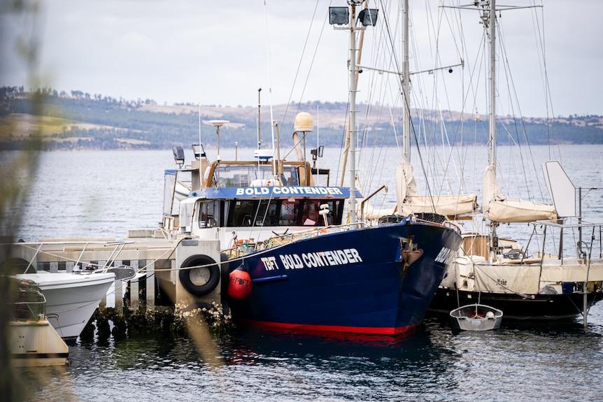 Boats in Margate Marina