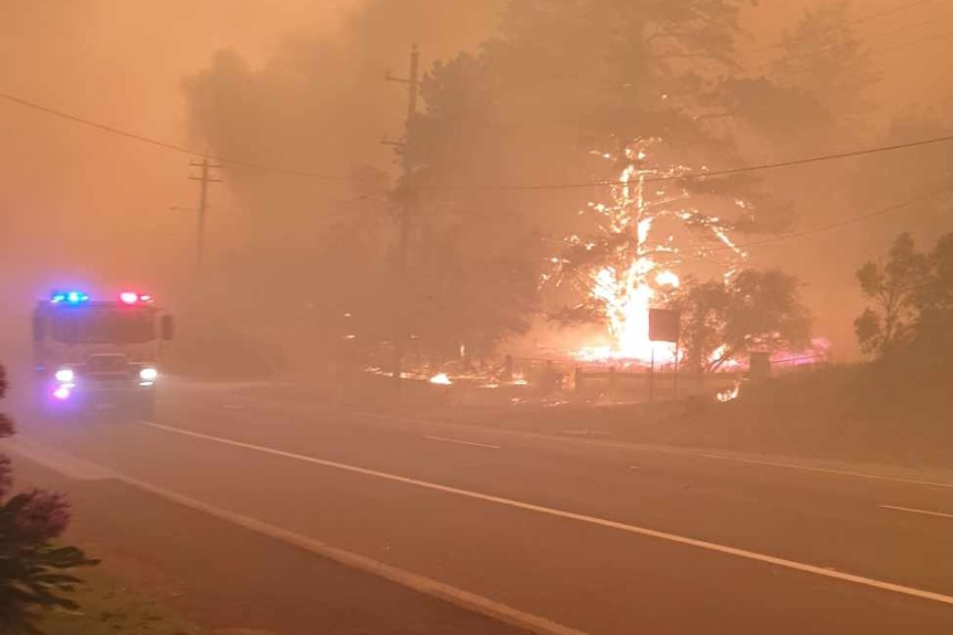 A tree on fire and a fire truck with lights on as Mogo is surrounded by orange smoke