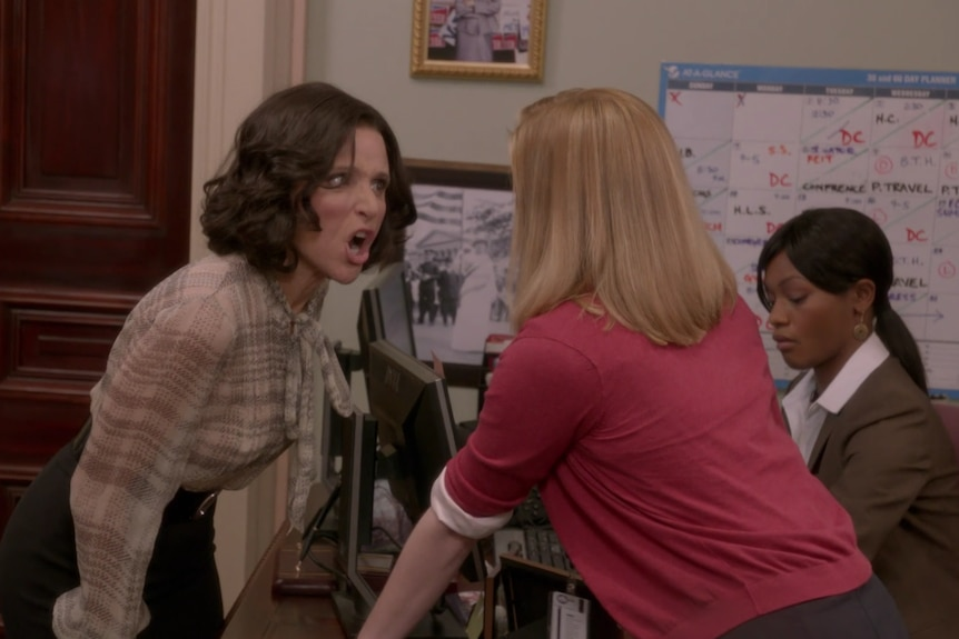 Selina Meyer, played by Julia Louis Dreyfus, rants to her staffer in an episode of Veep