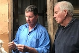 Brent and Scott Finlay examine wool.