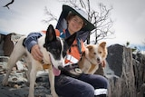 woman in PPE with sniffer dogs at work site