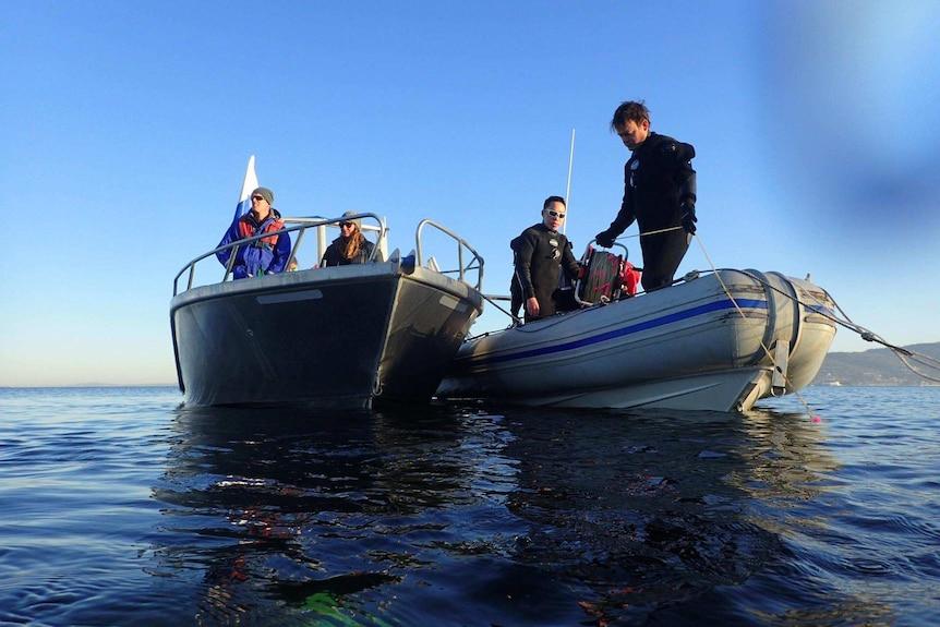 Handfish showed immediate interest