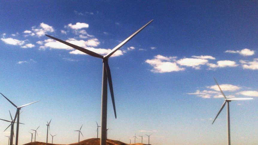 A wind farm in South Australia.