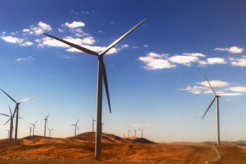 A wind farm near Burra, South Australia.