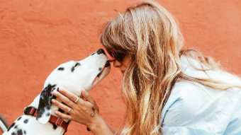 A dalmatian is seen on the left licking a blonde woman with sunglasses on. She has her hands on the dog's head.