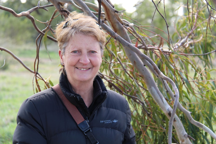 Dr Sally Bryant smiling, standing amongst the branches of a white gum tree on Hobart's Queens Domain.