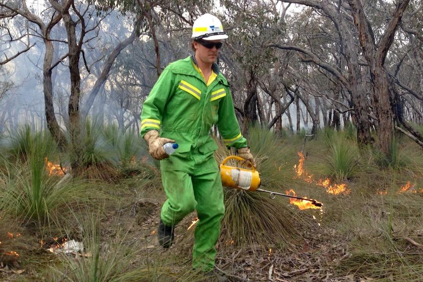 Planned burn near Anglesea, Victoria