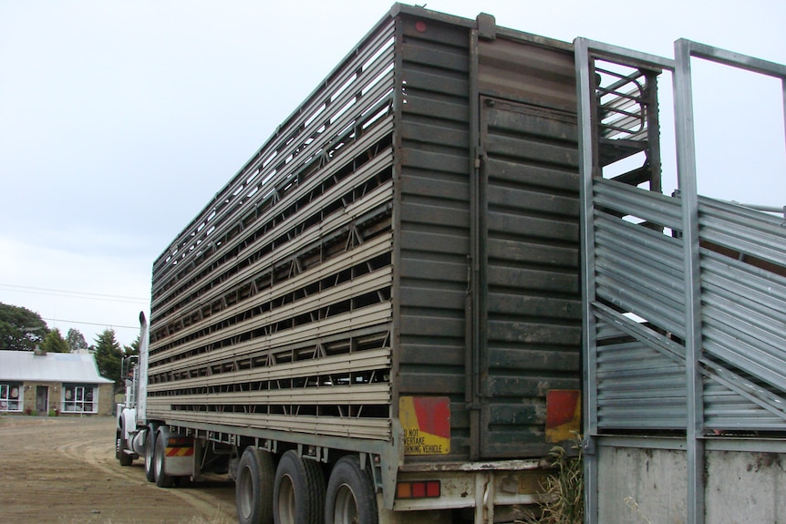 Livestock carriers calling for more infrastructure