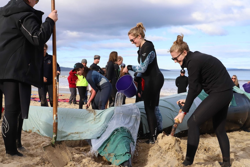 People dig around an inflatable whales fins and pour water