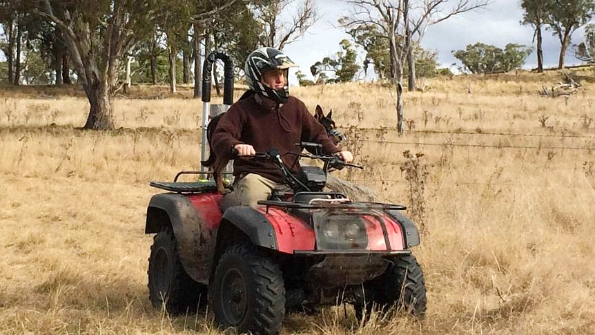 A farmer, wearing a helmet, rides a quad bike with his dog on the back