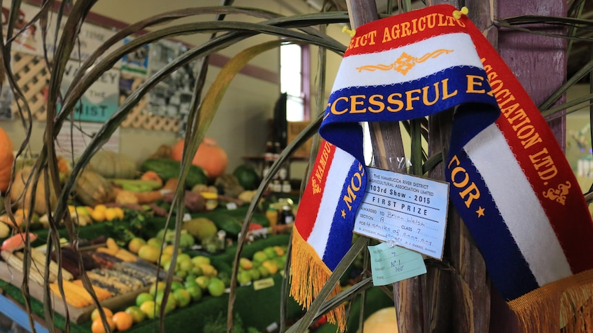 A champion show ribbon pinned to stalks of cane with a fruit and vegetable display in the background.