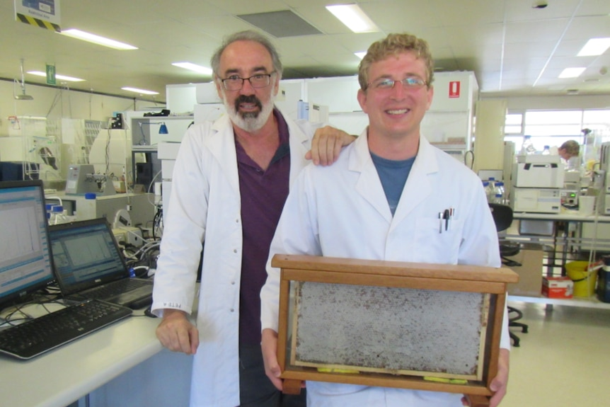 The two scientists in their honey lab holding a full frame of honey.