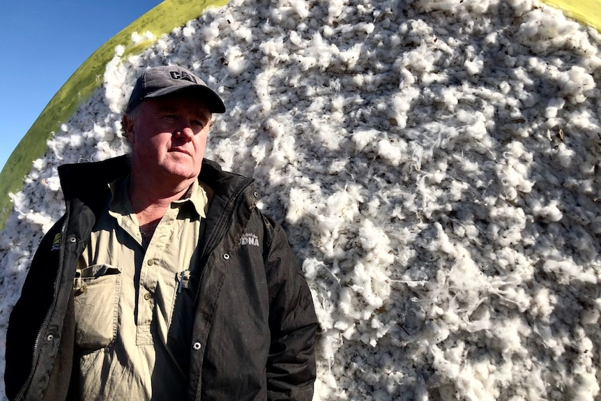 A man in a cap and black jacket stands in front of a cotton bale.