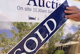 House sales are still booming
