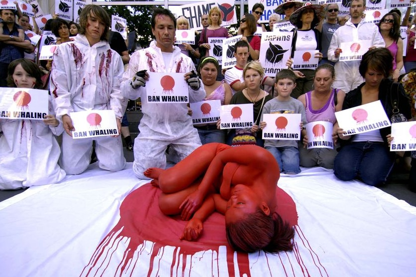 Anti-whaling protesters gather outside the Japanese consulate in Melbourne
