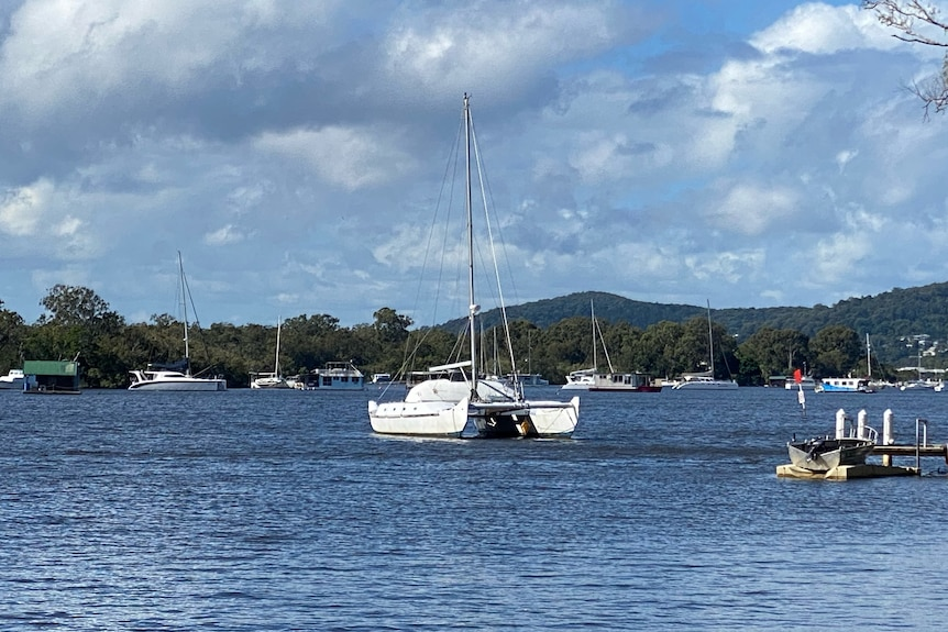 House boats and yachts in the Noosa River