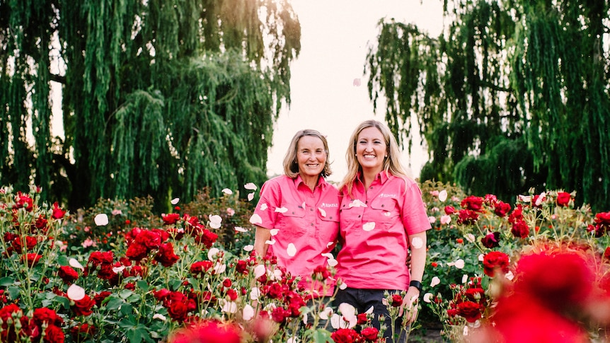 Two blonde women in pink shirts stand among red and white roses, with petals falling around them.
