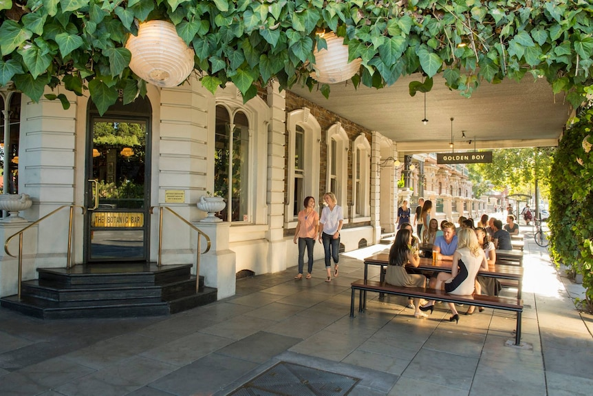 People sitting outside at tables under a veranda with vines on it