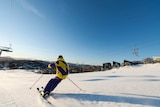 A person in yellow and purple snow gear skiing down a snow-covered mountain.