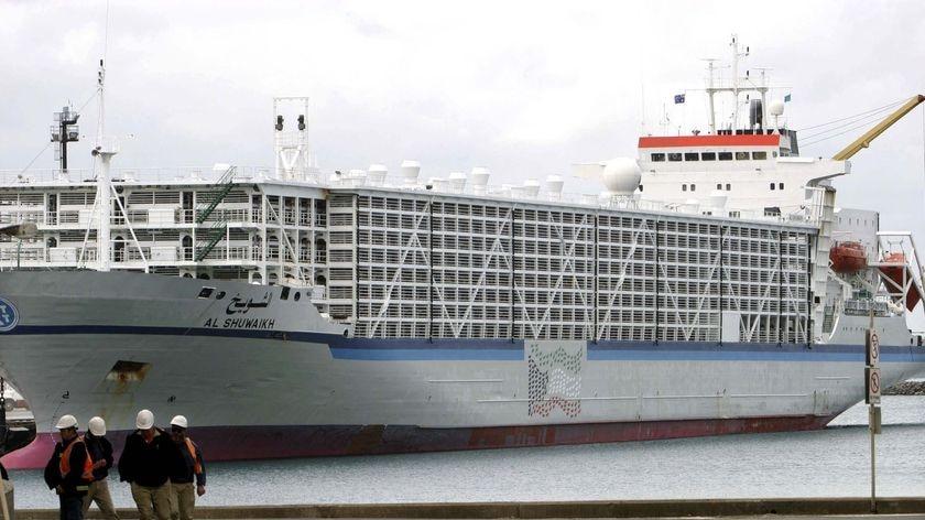 A live export ship sits at Portland, Victoria