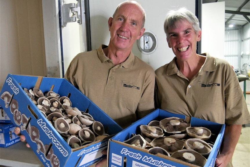 Two older people smile while holding a cardboard tray of mushrooms.