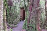 A toilet hidden in Tasmanian bush