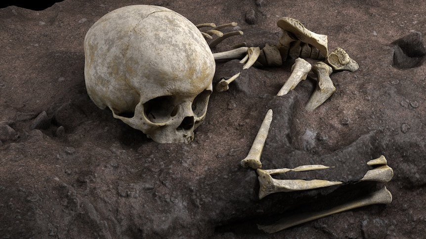 A skeleton in burial pit