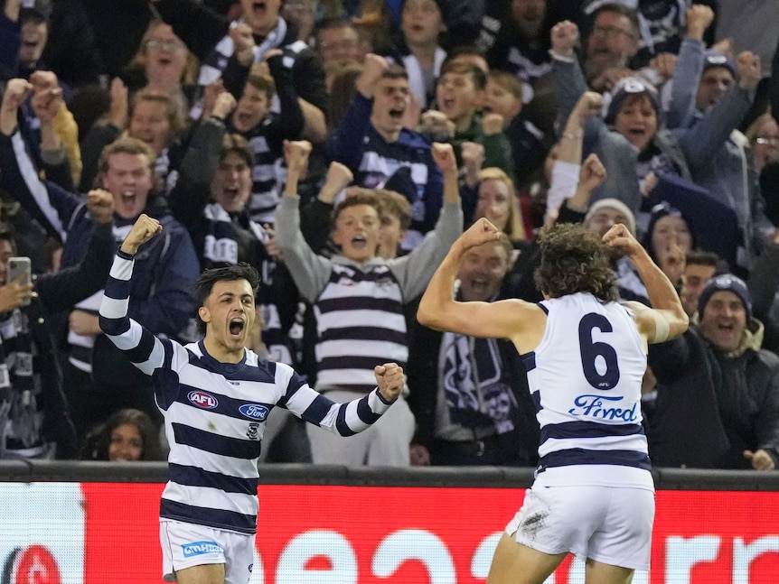 Geelong beats St Kilda by 21 points at Docklands to kick off round nine