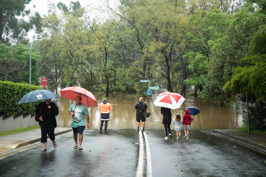 People with unbrellas stand beside a flooded road.