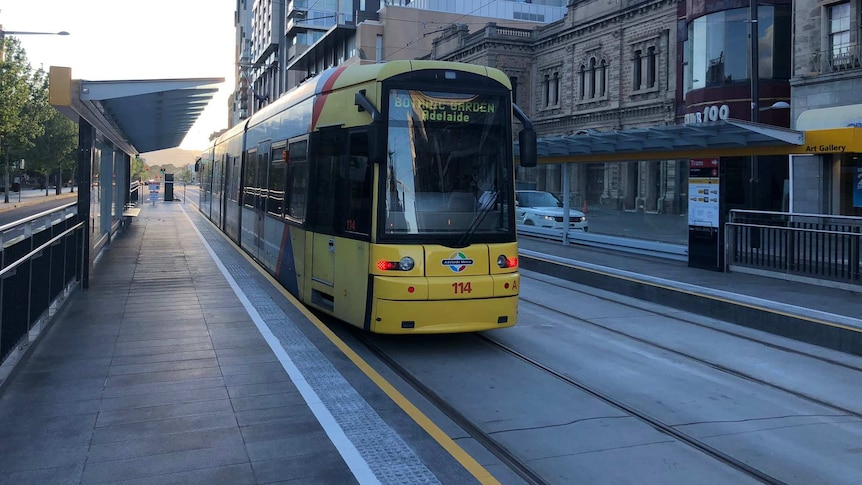 The first tram on North Terrace