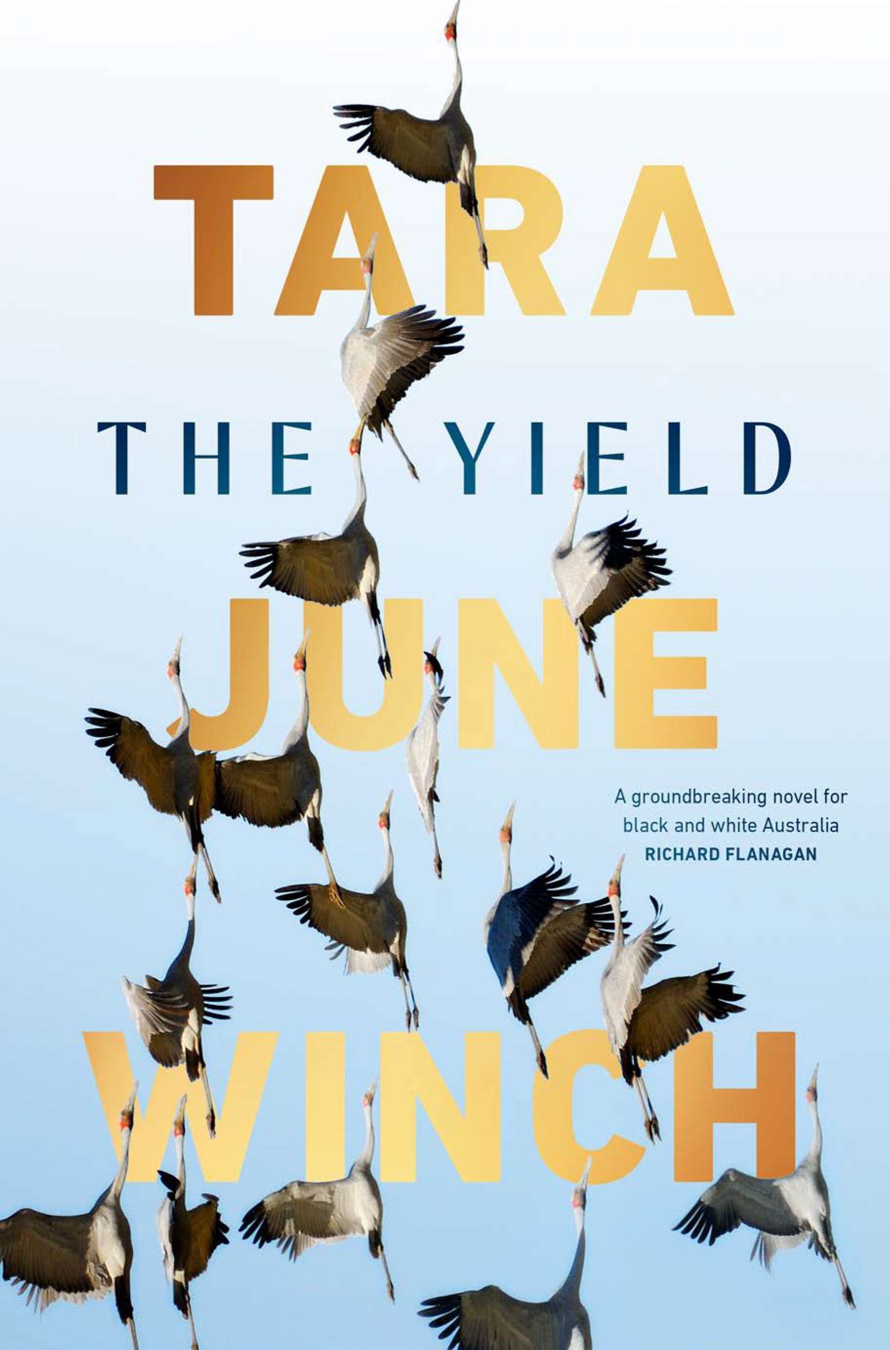 The Yield by Tara June Winch book cover featuring a flock of brolgas dancing in the sky