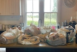 Bags of groceries laid out on a country kitchen bench with a window to the outside beyond.