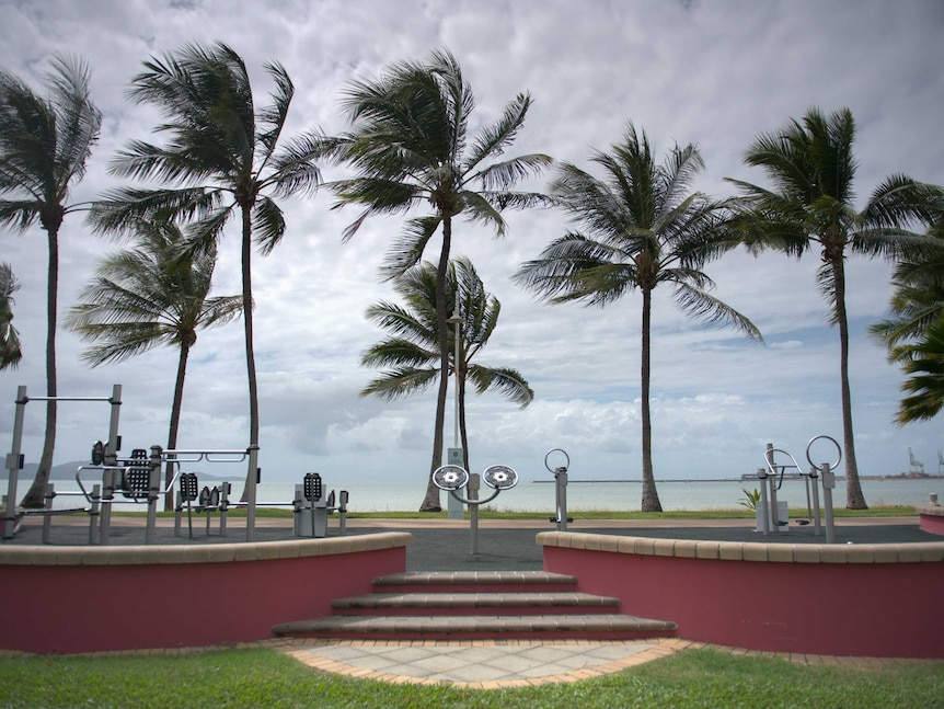 Palm trees blow and storm clouds brew in front of unused outdoor gym equipment