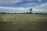 Melanie Velden's empty block of land near Clunes in Victoria.
