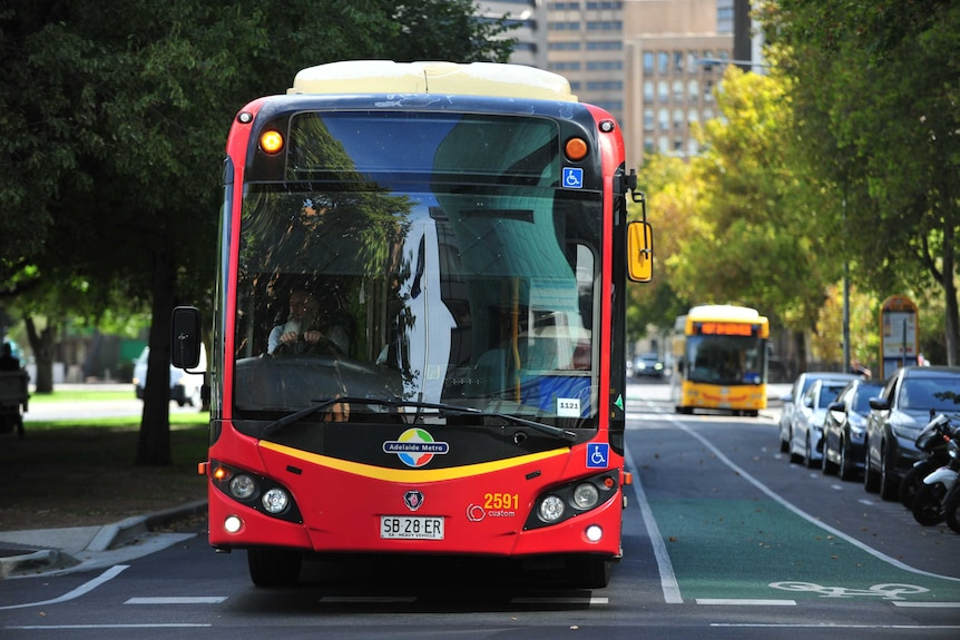 A red Adelaide Metro bus on a road in Adelaide's CBD.