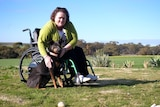 A woman in a wheelchair on a farm, leaning down to pat a dog.