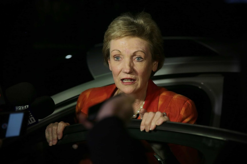 Jane Prentice is leaning over a car door, talking to the media.